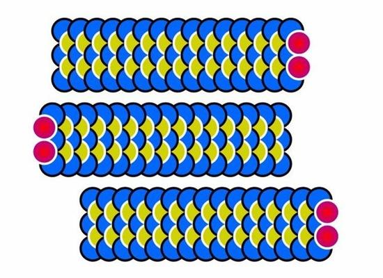 2ijm99f1
